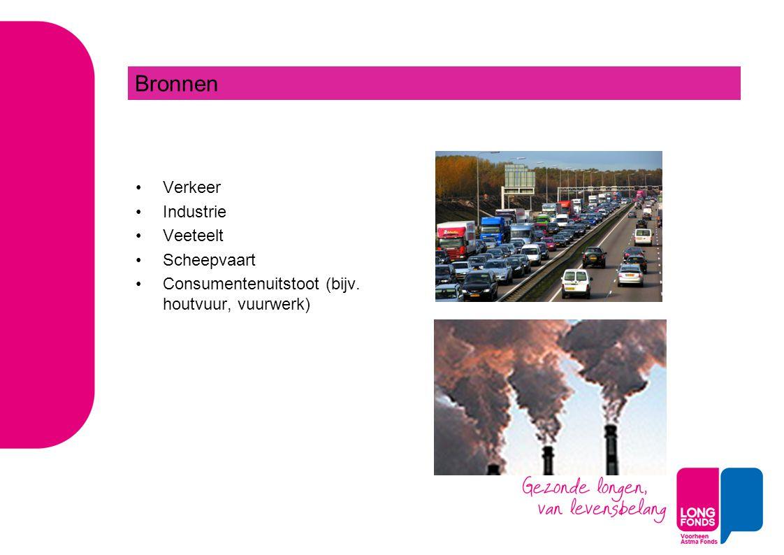 Verkeer Industrie Veeteelt Scheepvaart Consumentenuitstoot (bijv. houtvuur, vuurwerk) Bronnen