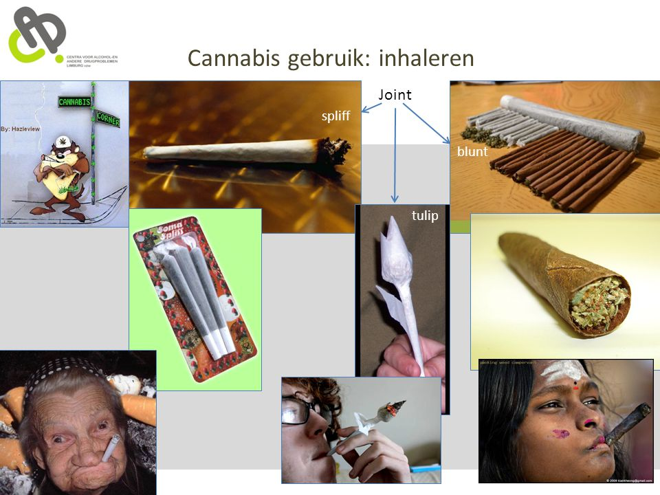 Cannabis gebruik: inhaleren Joint spliff blunt tulip