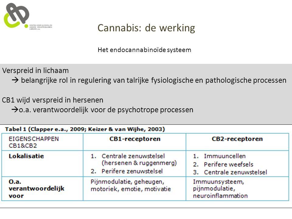 Cannabis: de werking Het endocannabinoïde systeem CB1 wijd verspreid in hersenen  o.a. verantwoordelijk voor de psychotrope processen Verspreid in li