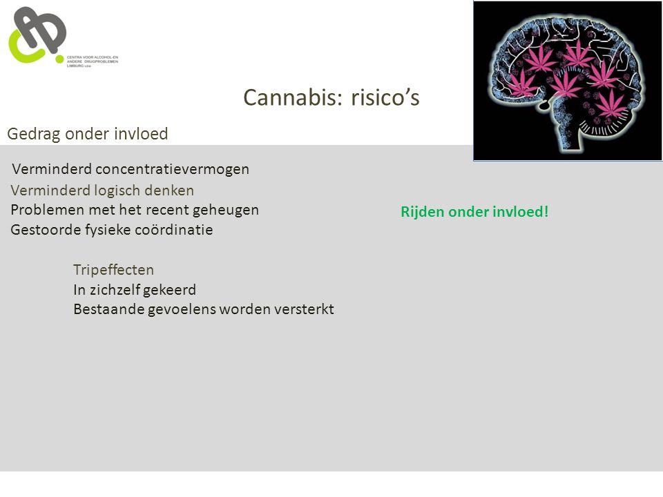 Cannabis: risico's Gedrag onder invloed Verminderd concentratievermogen Verminderd logisch denken Problemen met het recent geheugen Gestoorde fysieke