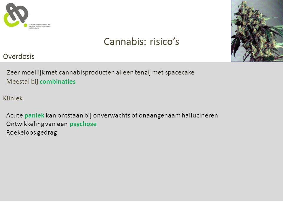 Cannabis: risico's Overdosis Zeer moeilijk met cannabisproducten alleen tenzij met spacecake Meestal bij combinaties Kliniek Acute paniek kan ontstaan