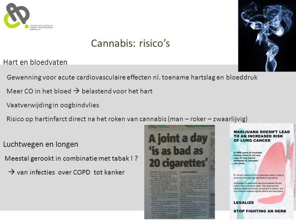 Cannabis: risico's Hart en bloedvaten Gewenning voor acute cardiovasculaire effecten nl. toename hartslag en bloeddruk Meer CO in het bloed  belasten