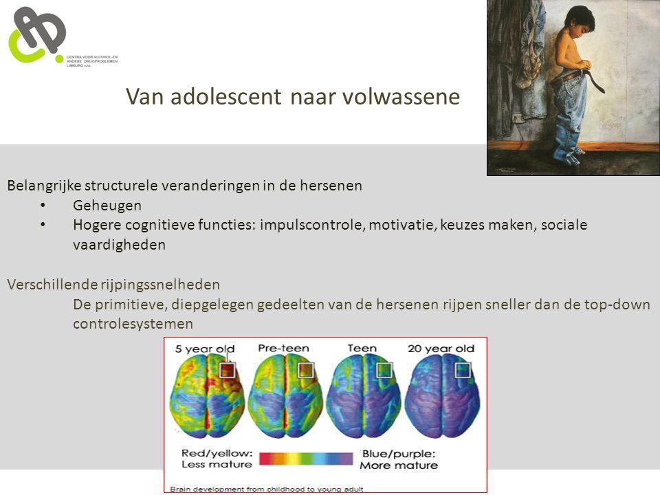 Belangrijke structurele veranderingen in de hersenen Geheugen Hogere cognitieve functies: impulscontrole, motivatie, keuzes maken, sociale vaardighede