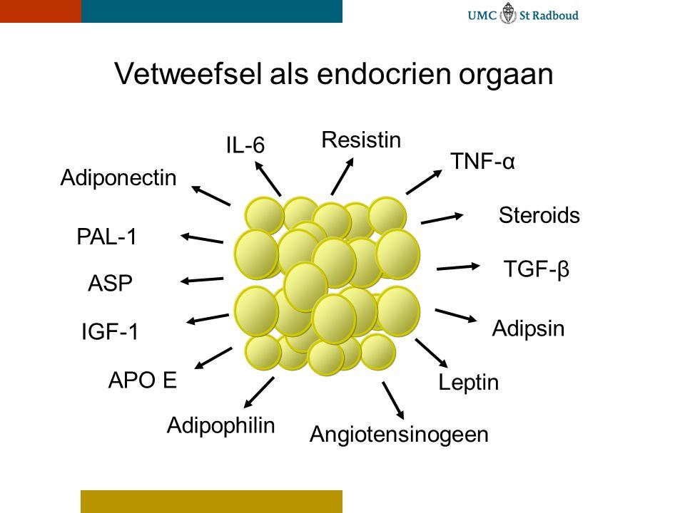 Ontwerpvoorstel Powerpoint A voor UMC St Radboud 2004 Vetweefsel als endocrien orgaan PAL-1 IL-6 TGF-β IGF-1 ASP APO E Adiponectin TNF-α Adipophilin Angiotensinogeen Adipsin Leptin Steroids Resistin