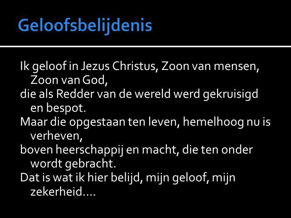Ik geloof in Jezus Christus, Zoon van mensen, Zoon van God, die als Redder van de wereld werd gekruisigd en bespot. Maar die opgestaan ten leven, heme