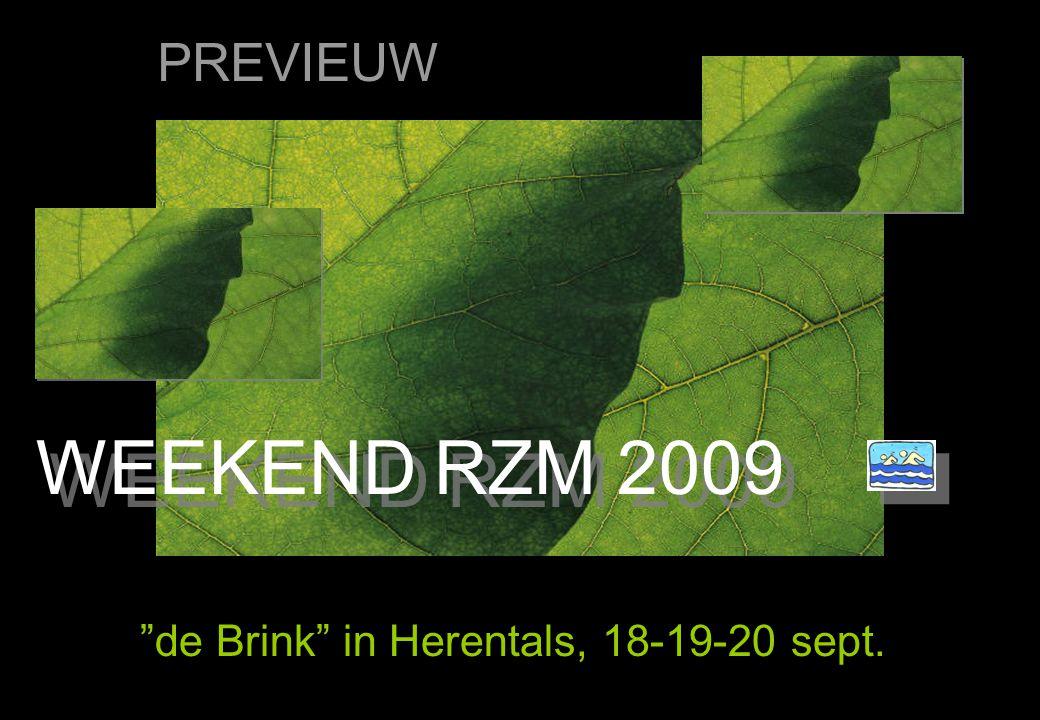 DE PLEK de Brink in Herentals, 18-19-20 sept. ACCOMODATIE