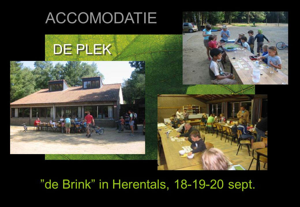 DE PLEK de Brink in Herentals, 18-19-20 sept. ACCOMODATIE