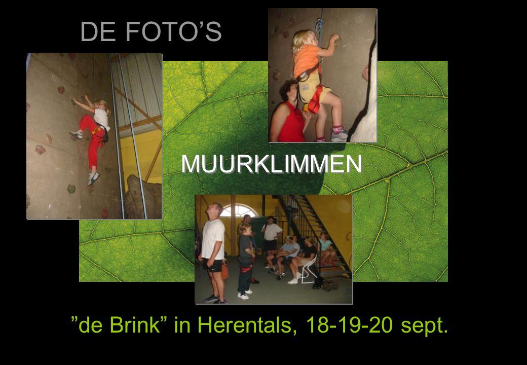 """MUURKLIMMEN """"de Brink"""" in Herentals, 18-19-20 sept. DE FOTO'S"""