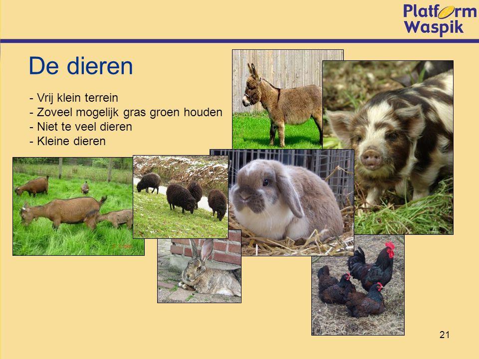 21 - Vrij klein terrein - Zoveel mogelijk gras groen houden - Niet te veel dieren - Kleine dieren De dieren