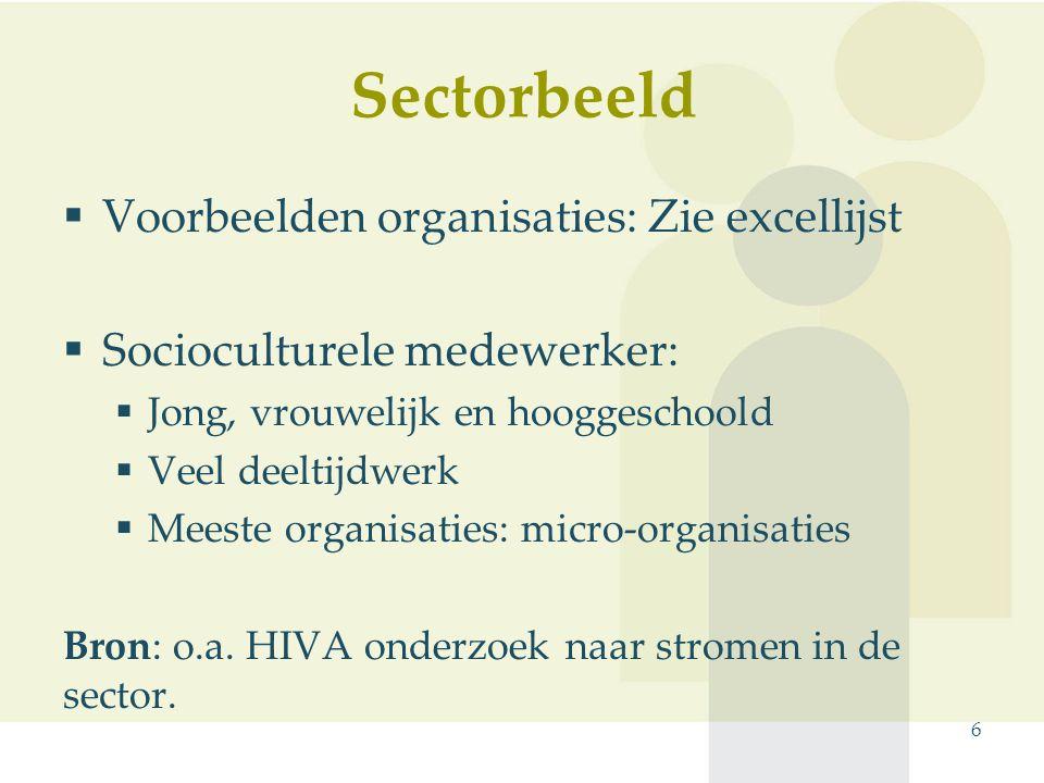 6  Voorbeelden organisaties: Zie excellijst  Socioculturele medewerker:  Jong, vrouwelijk en hooggeschoold  Veel deeltijdwerk  Meeste organisaties: micro-organisaties Bron: o.a.