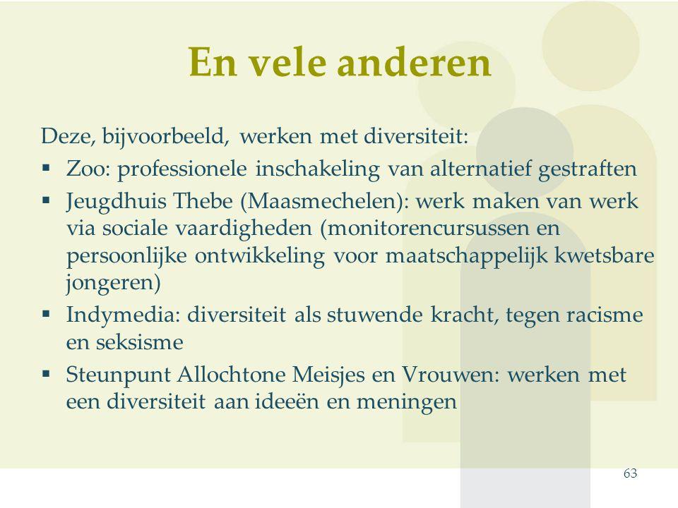 En vele anderen 63 Deze, bijvoorbeeld, werken met diversiteit:  Zoo: professionele inschakeling van alternatief gestraften  Jeugdhuis Thebe (Maasmec