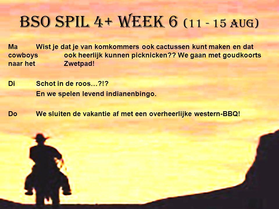 BSO Spil 4+ week 6 (11 - 15 aug) MaWist je dat je van komkommers ook cactussen kunt maken en dat cowboys ook heerlijk kunnen picknicken?? We gaan met