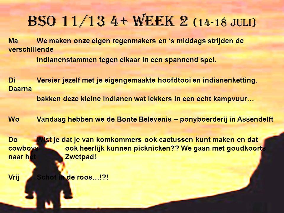 BSO 11/13 4+ week 2 (14-18 juli) MaWe maken onze eigen regenmakers en 's middags strijden de verschillende Indianenstammen tegen elkaar in een spannen