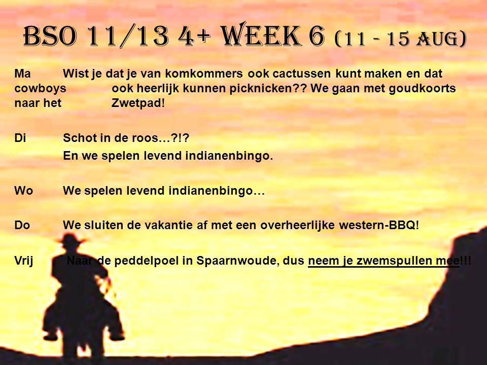 BSO 11/13 4+ week 6 (11 - 15 aug) MaWist je dat je van komkommers ook cactussen kunt maken en dat cowboys ook heerlijk kunnen picknicken?? We gaan met
