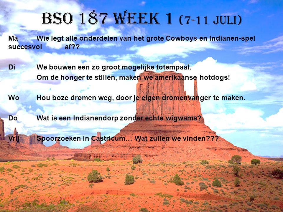 BSO 187 week 1 (7-11 juli) MaWie legt alle onderdelen van het grote Cowboys en Indianen-spel succesvol af?? DiWe bouwen een zo groot mogelijke totempa