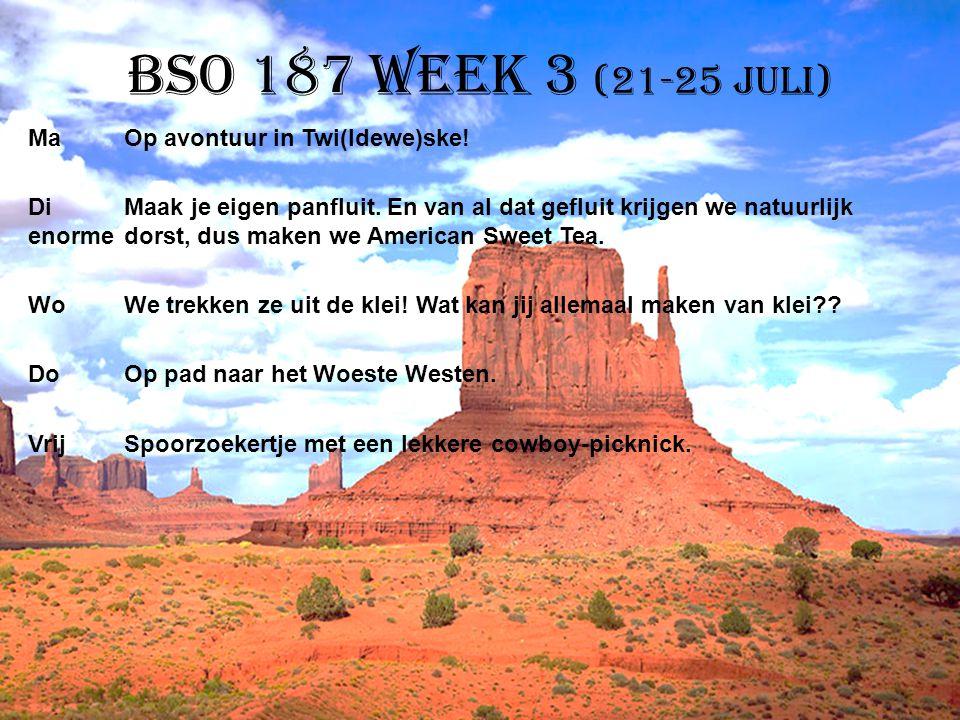 BSO 187 week 3 (21-25 juli) MaOp avontuur in Twi(ldewe)ske! DiMaak je eigen panfluit. En van al dat gefluit krijgen we natuurlijk enorme dorst, dus ma