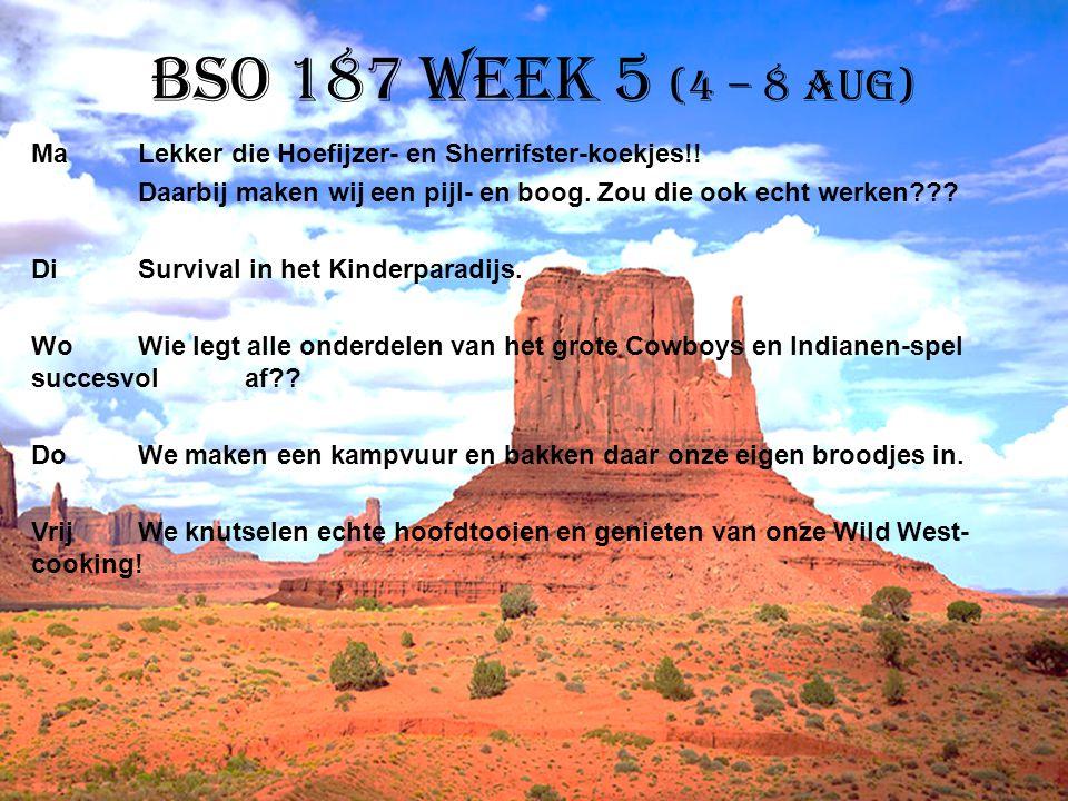 BSO 187 week 5 (4 – 8 aug) MaLekker die Hoefijzer- en Sherrifster-koekjes!! Daarbij maken wij een pijl- en boog. Zou die ook echt werken??? DiSurvival