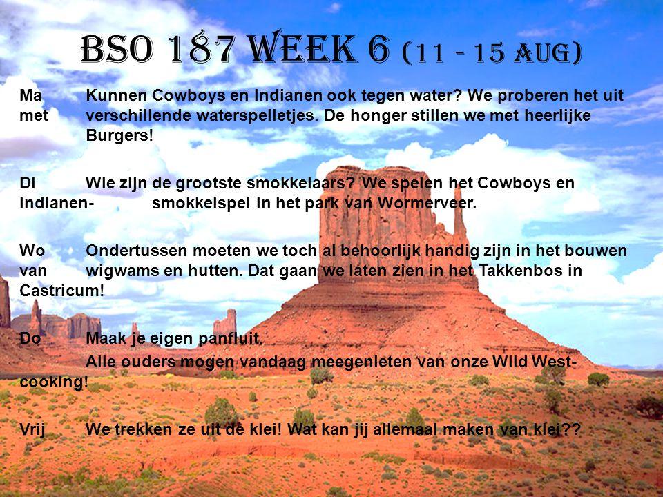 BSO 187 week 6 (11 - 15 aug) MaKunnen Cowboys en Indianen ook tegen water? We proberen het uit met verschillende waterspelletjes. De honger stillen we