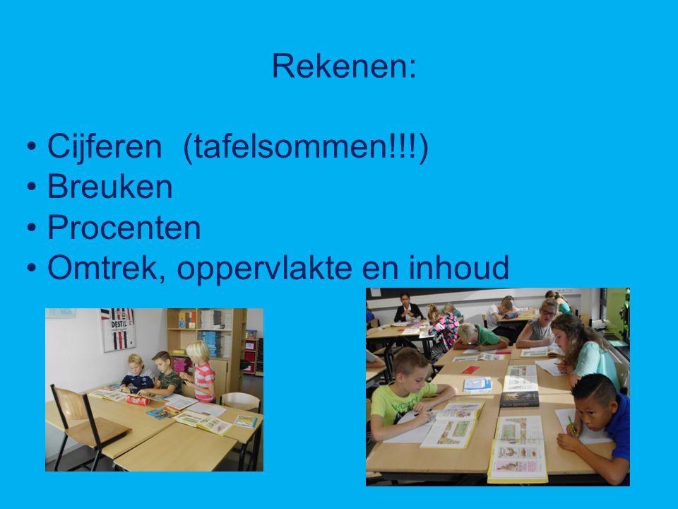 Rekenen: Cijferen (tafelsommen!!!) Breuken Procenten Omtrek, oppervlakte en inhoud