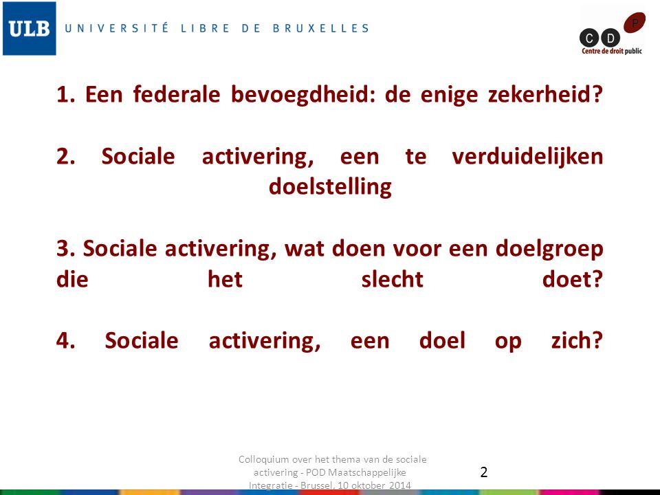 1. Een federale bevoegdheid: de enige zekerheid? 2. Sociale activering, een te verduidelijken doelstelling 3. Sociale activering, wat doen voor een do