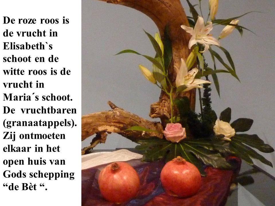 De roze roos is de vrucht in Elisabeth`s schoot en de witte roos is de vrucht in Maria´s schoot.