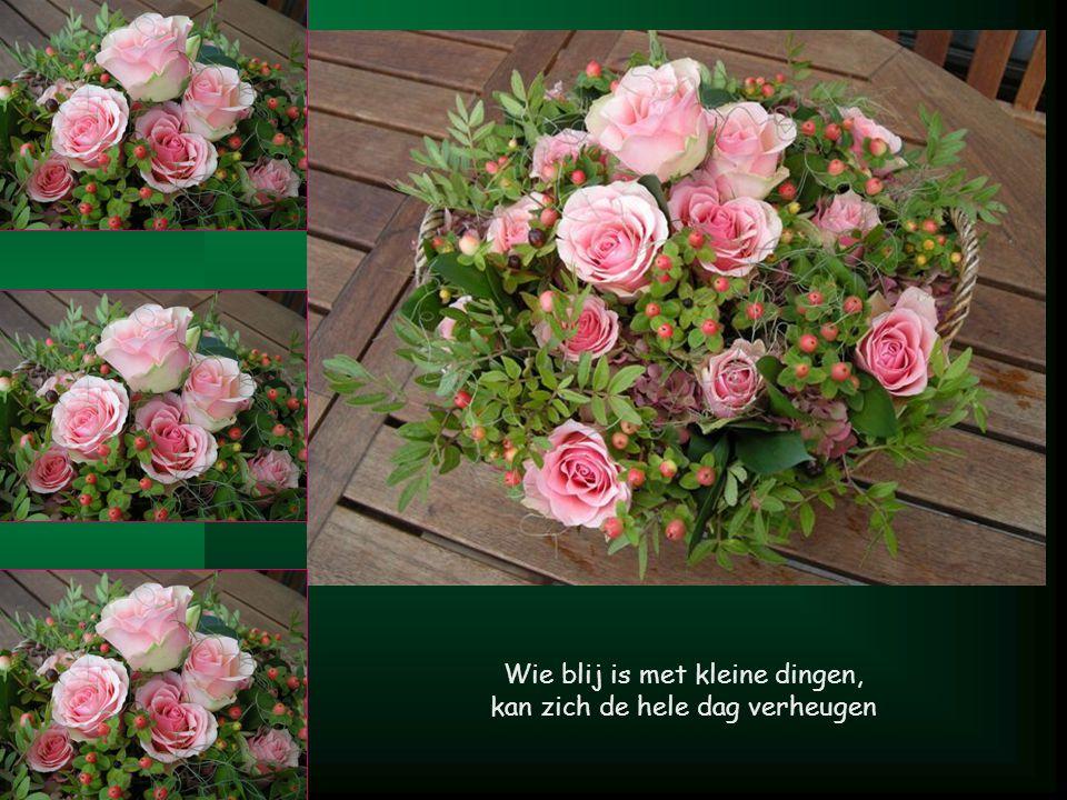 M Bloemen geef je niet alleen met je handen, maar ook met je hart.