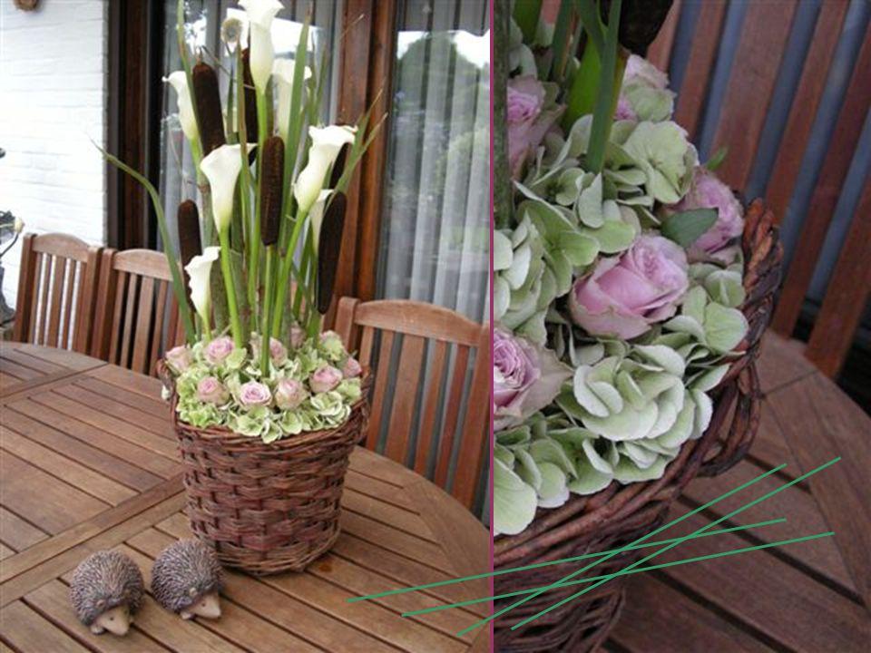 M Laat bloemen uw tolk zijn … dan wensen wij u veel schoonheid in het leven ! M A R I A