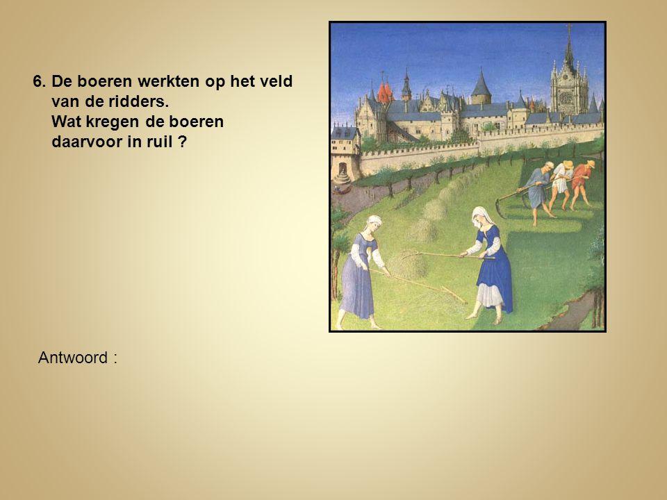 6. De boeren werkten op het veld van de ridders. Wat kregen de boeren daarvoor in ruil ? Antwoord :