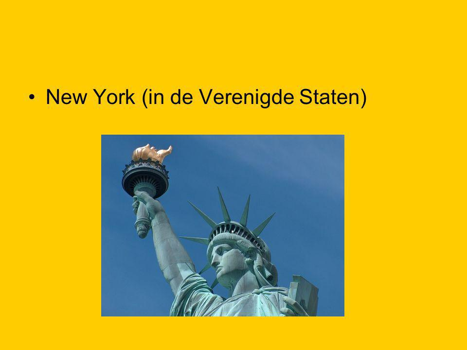 New York (in de Verenigde Staten)