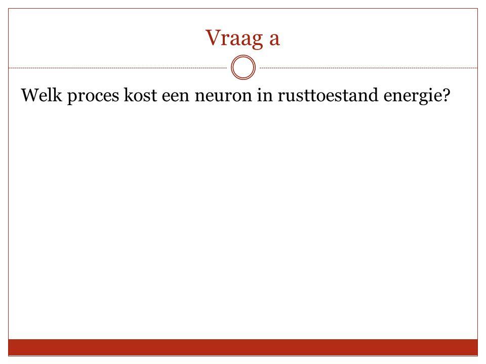 Vraag a Welk proces kost een neuron in rusttoestand energie?