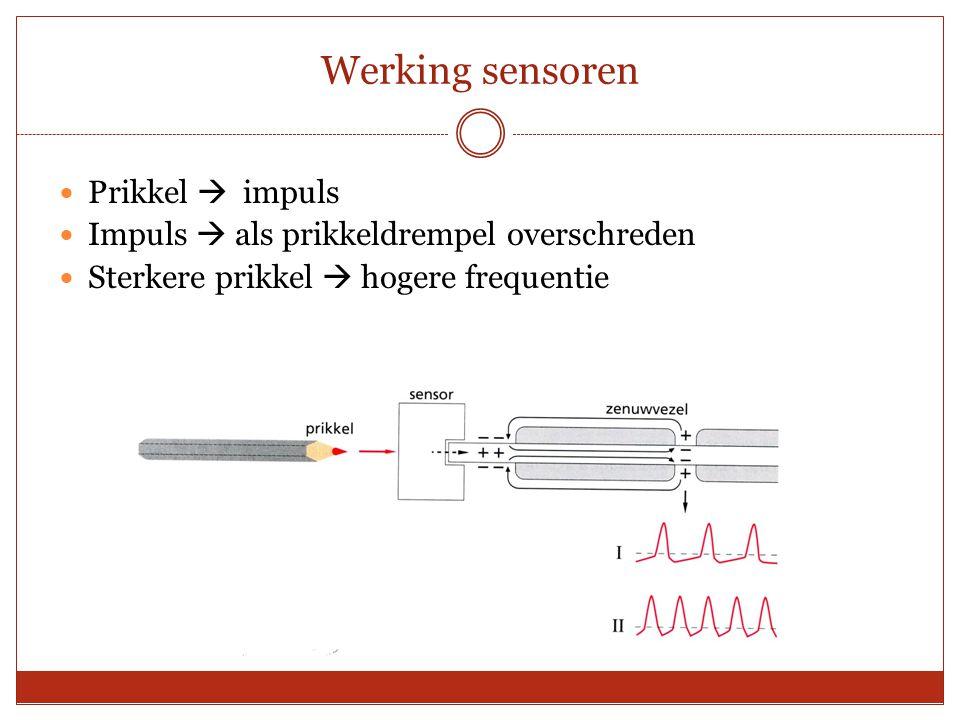 Werking sensoren Prikkel  impuls Impuls  als prikkeldrempel overschreden Sterkere prikkel  hogere frequentie