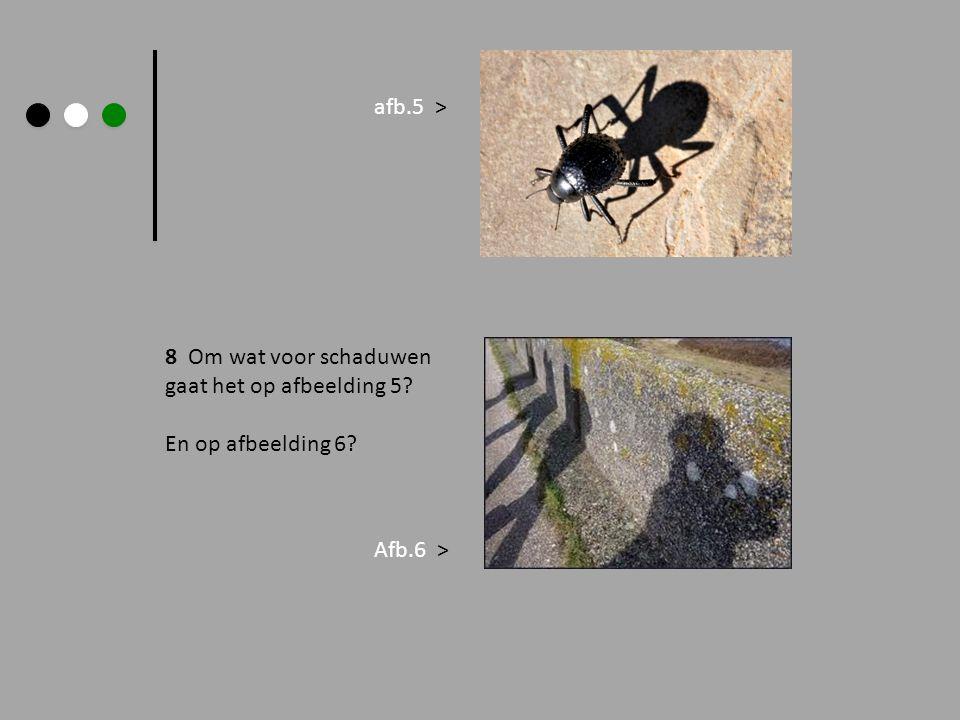 8 Om wat voor schaduwen gaat het op afbeelding 5? En op afbeelding 6? afb.5 > Afb.6 >
