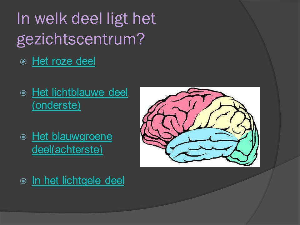 In welke richting geleidt de hersenstam impulsen.
