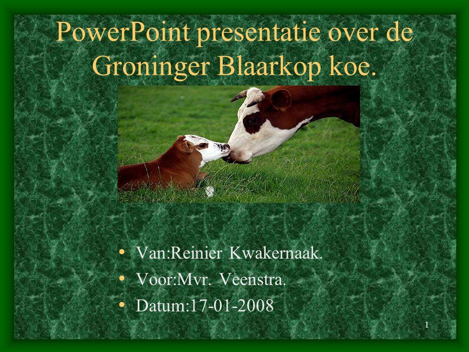 1 PowerPoint presentatie over de Groninger Blaarkop koe. Van:Reinier Kwakernaak. Voor:Mvr. Veenstra. Datum:17-01-2008