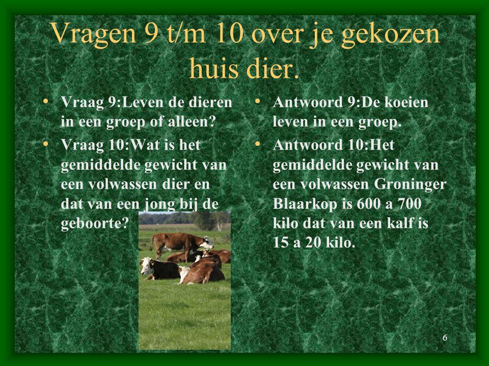 6 Vragen 9 t/m 10 over je gekozen huis dier. Vraag 9:Leven de dieren in een groep of alleen? Vraag 10:Wat is het gemiddelde gewicht van een volwassen