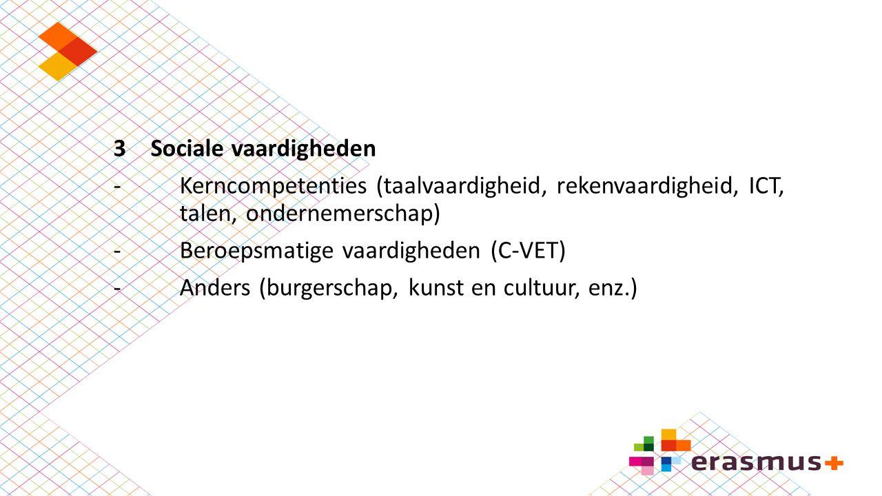 3Sociale vaardigheden -Kerncompetenties (taalvaardigheid, rekenvaardigheid, ICT, talen, ondernemerschap) -Beroepsmatige vaardigheden (C-VET) -Anders (