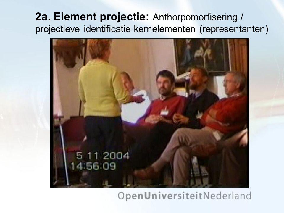 2a. Element projectie: Anthorpomorfisering / projectieve identificatie kernelementen (representanten)