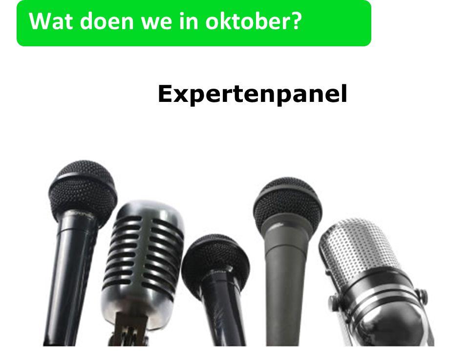 Expertenpanel