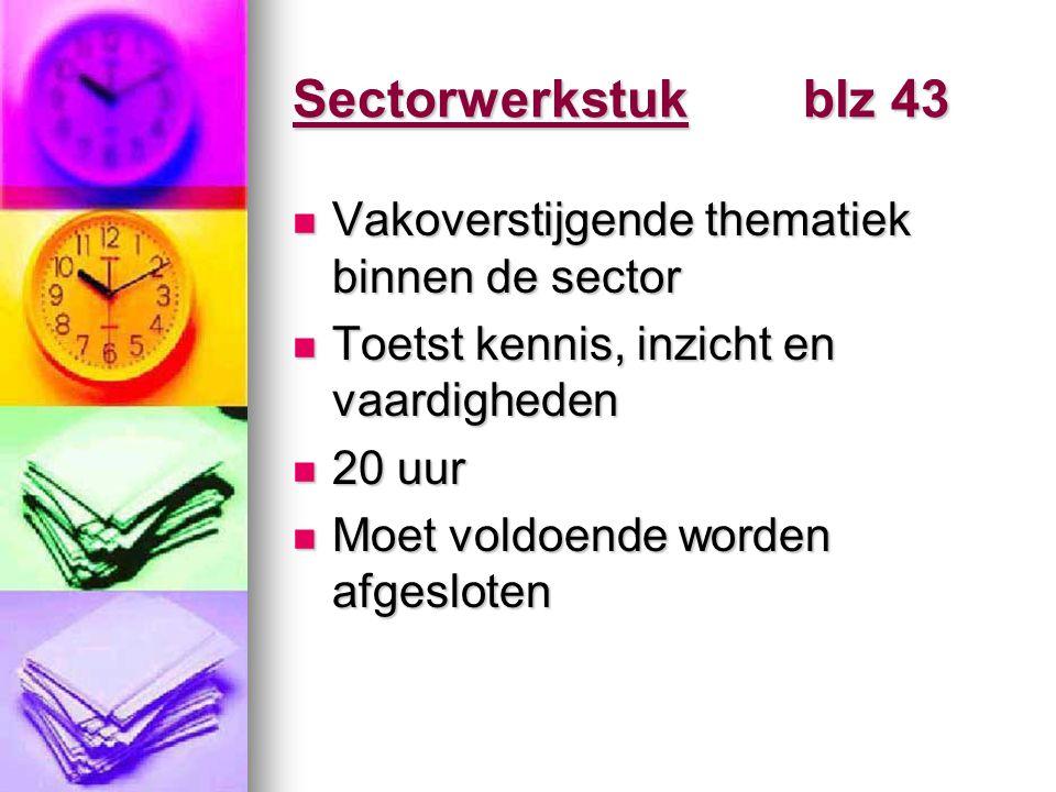 Sectorwerkstuk blz 43 Vakoverstijgende thematiek binnen de sector Vakoverstijgende thematiek binnen de sector Toetst kennis, inzicht en vaardigheden T