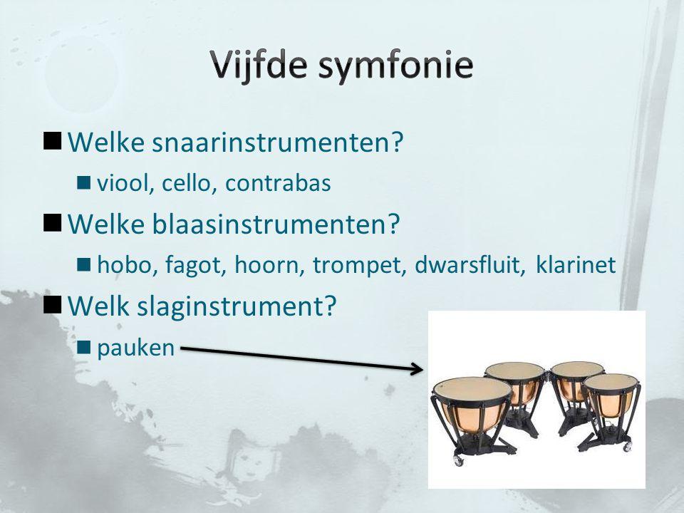 Welke snaarinstrumenten? viool, cello, contrabas Welke blaasinstrumenten? hobo, fagot, hoorn, trompet, dwarsfluit, klarinet Welk slaginstrument? pauke