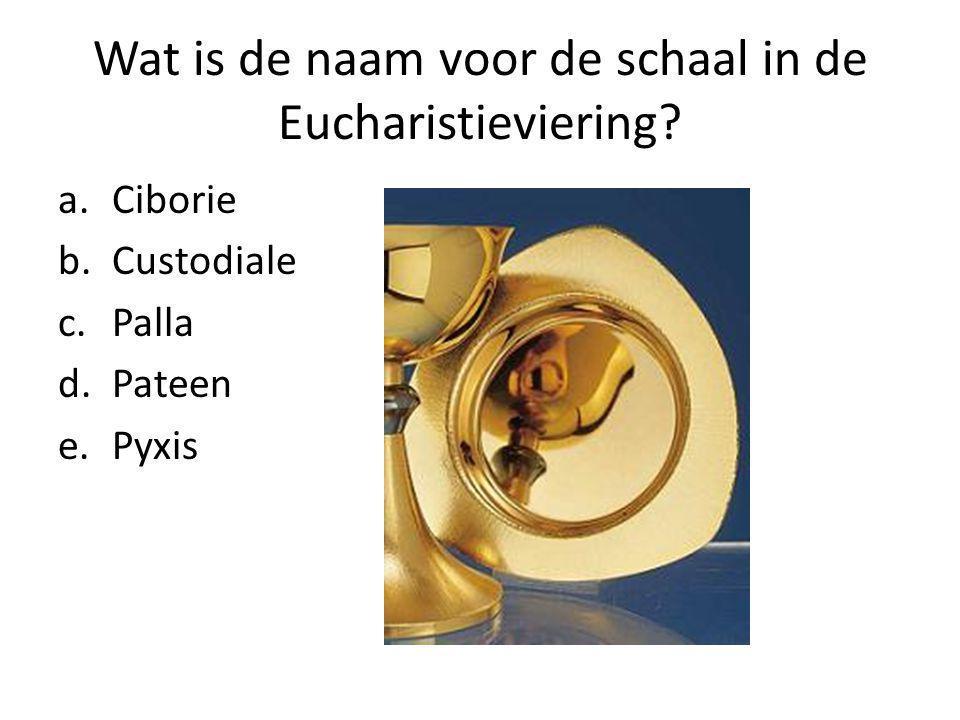 Wat is de naam voor de schaal in de Eucharistieviering.