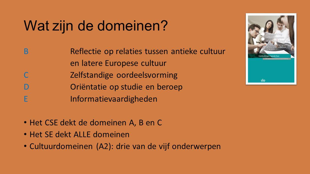 Wat zijn de domeinen? BReflectie op relaties tussen antieke cultuur en latere Europese cultuur CZelfstandige oordeelsvorming DOriëntatie op studie en