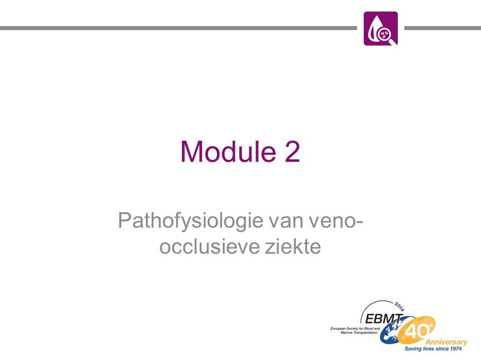 Module 2 Pathofysiologie van veno- occlusieve ziekte
