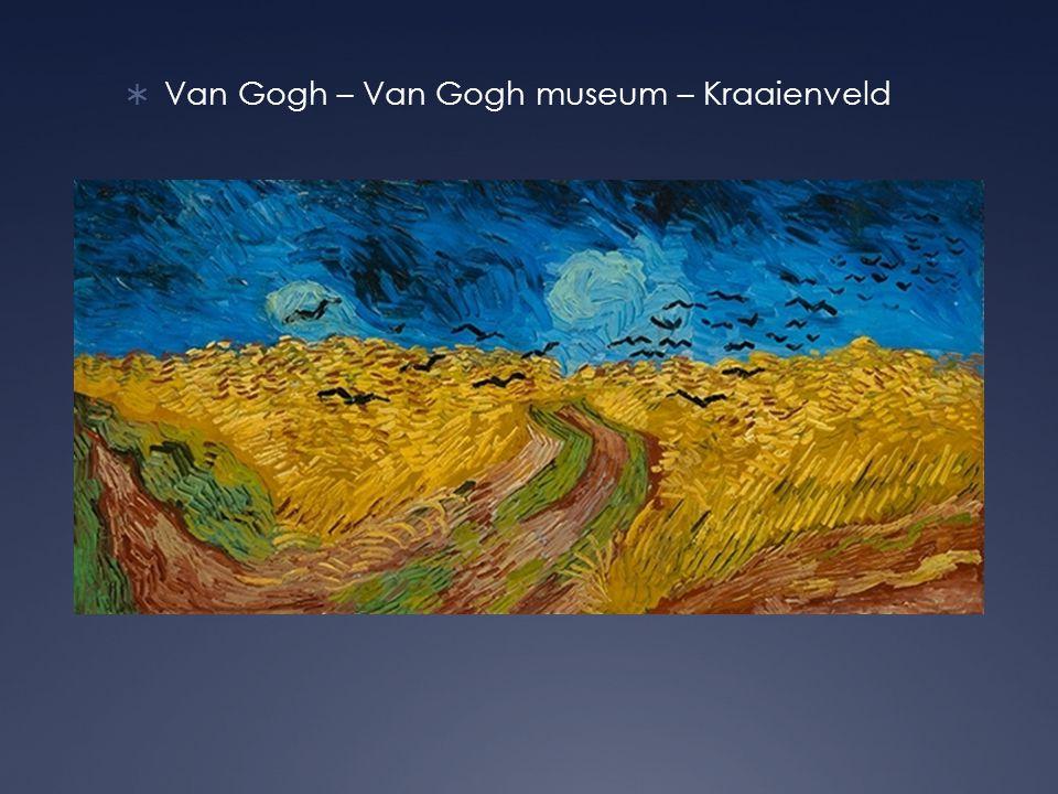  Van Gogh – Van Gogh museum – Kraaienveld