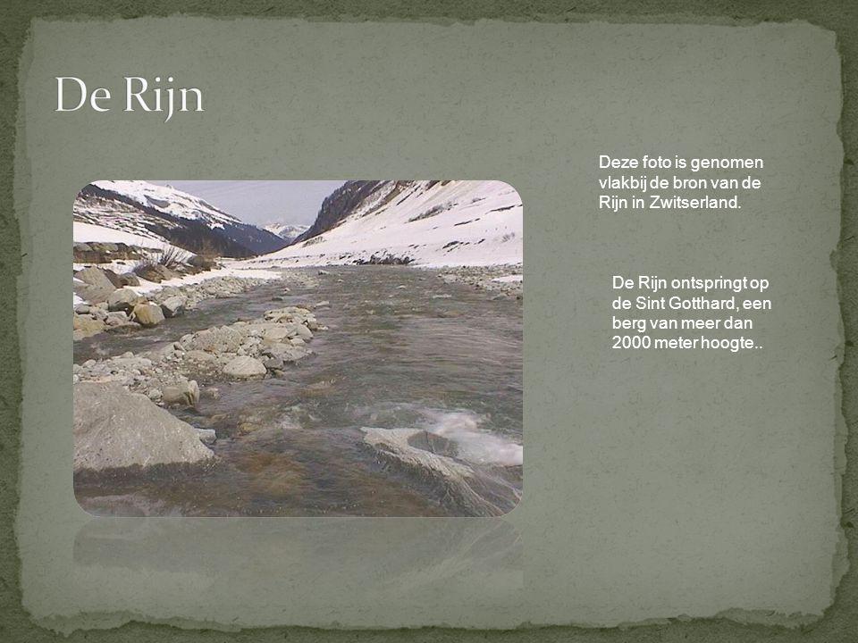 Deze foto is genomen vlakbij de bron van de Rijn in Zwitserland. De Rijn ontspringt op de Sint Gotthard, een berg van meer dan 2000 meter hoogte..