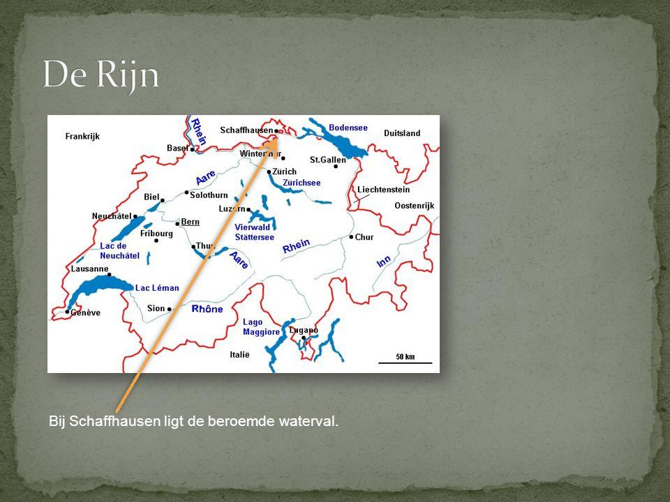 In Nederland vertakt de Rijn zich in veel verschillende mondingen en komt uit in de Noordzee.
