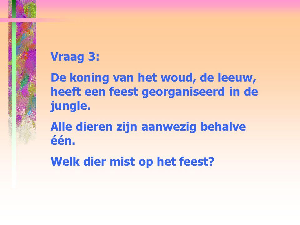 Vraag 3: De koning van het woud, de leeuw, heeft een feest georganiseerd in de jungle.