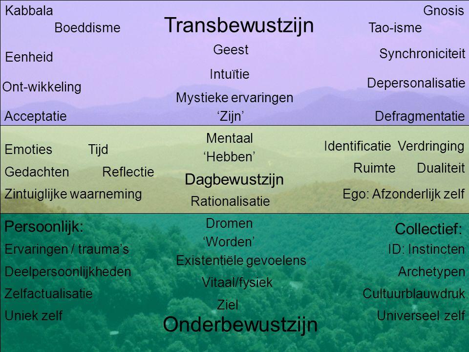 Dagbewustzijn Transbewustzijn Onderbewustzijn Emoties Gedachten Identificatie Verdringing Dualiteit Persoonlijk: Collectief: Dromen Archetypen ID: Ins