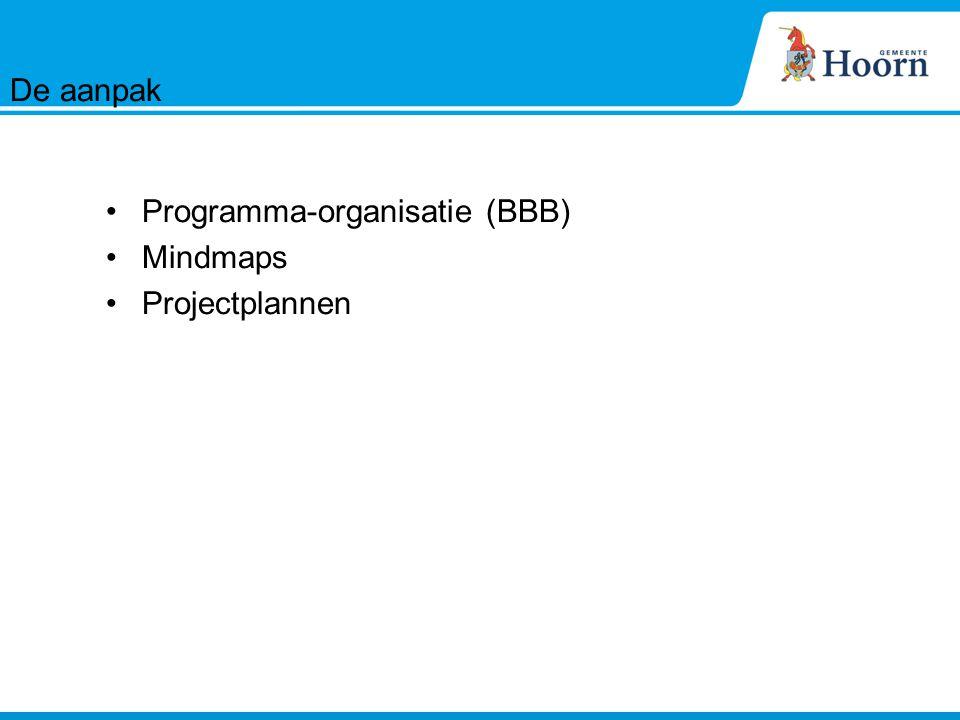 Programma-organisatie (BBB) Mindmaps Projectplannen De aanpak