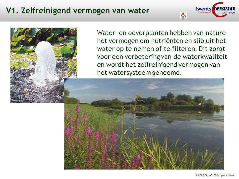 © 2009 Biosoft TCC - Lyceumstraat V1. Zelfreinigend vermogen van water Water- en oeverplanten hebben van nature het vermogen om nutriënten en slib uit
